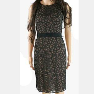 🆕️👗✂️VERA WANG Sheath lace dress